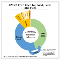UMRB Corn Used for Food, Feed, and Fuel Graph