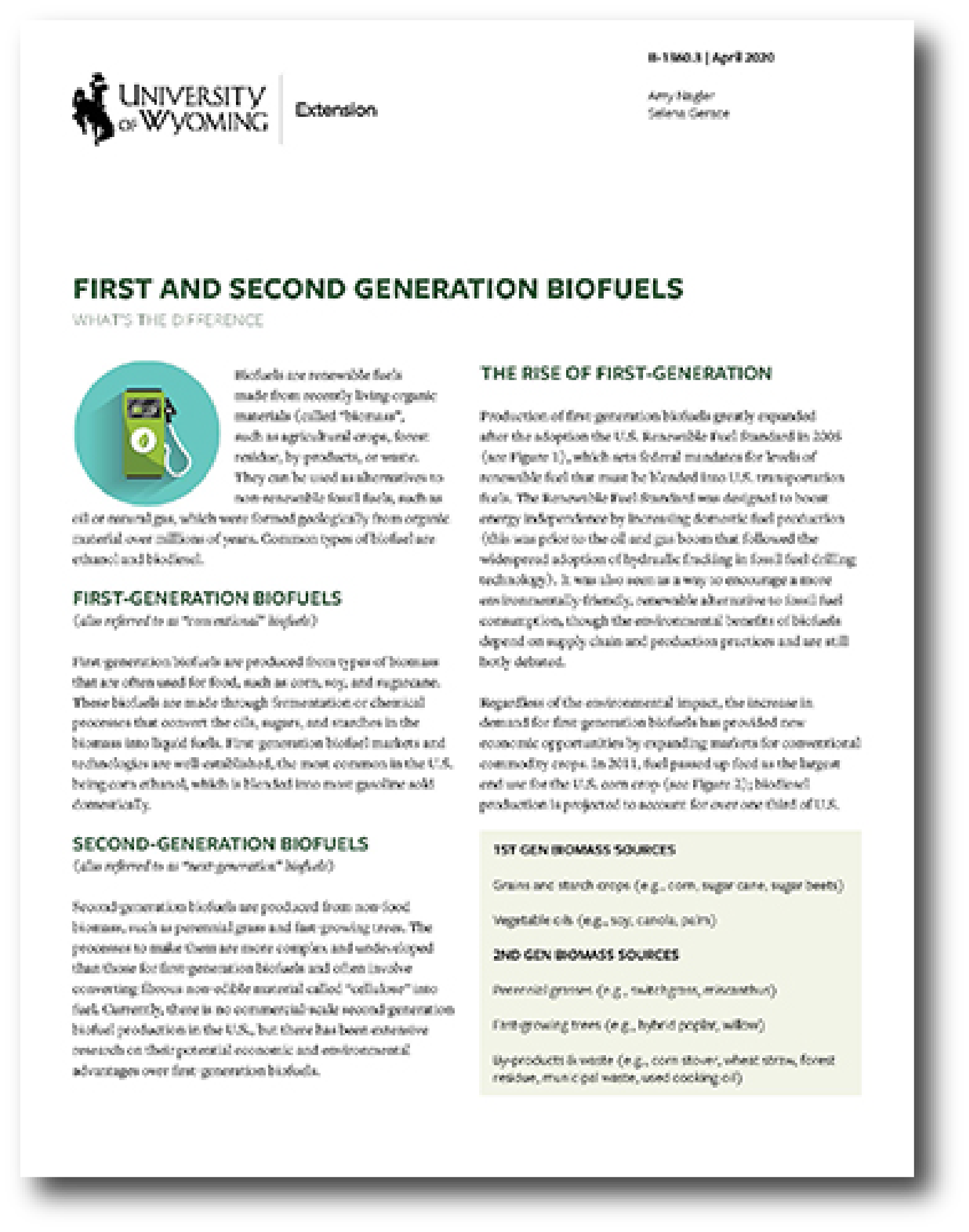 image of the first page of the 'First and Second Generation Biofuels' fact sheet