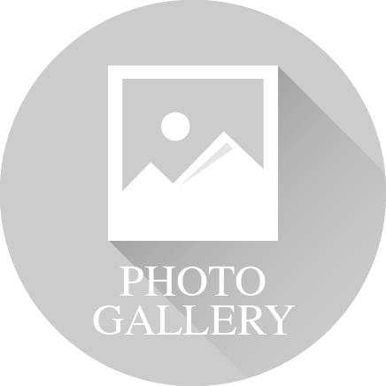 Icon of photograph and the words 'Photo Gallery'